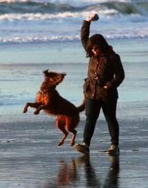 Photo: Tom Pendergast Deva Mathur, of Belmont, California, plays at Ocean Beach with her Labradoodle dog Coco, on Dec. 26.