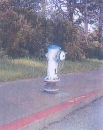 stowlakehydrant-copy.jpeg